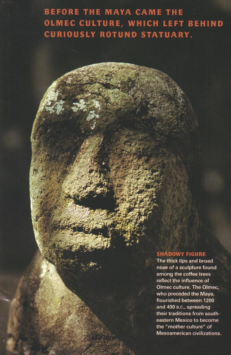 moche human sacrifice code essay The ancient olmec civilization was a complex society that predated both the mayans and the aztecs  and perhaps even human sacrifice were used by the olmec society.